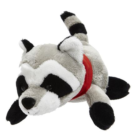 Pocket Pets - Raccoon